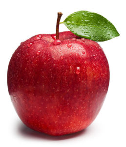Is Apple Support Open Christmas Eve 2020 Beardsley's Cider Mill – Apple Orchard